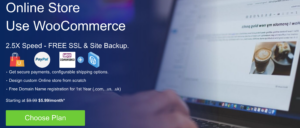 Online Store Use WooCommerce