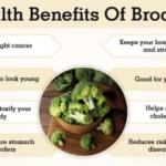 The Health Benefits of Eating Broccoli